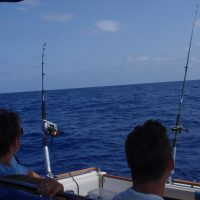 excursiones en barco para pescar